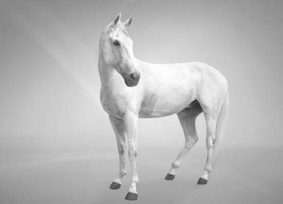 veasey_bev_horse