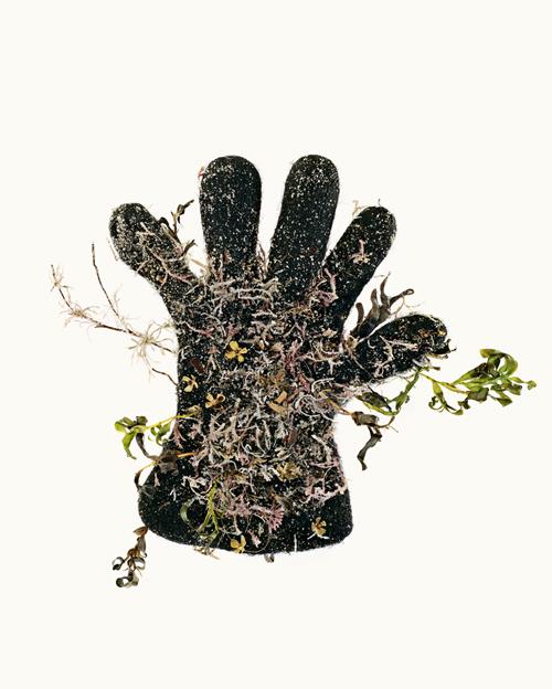 Small Black Glove