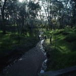 bendigo creek